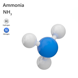 Ammoniaque (ou ammoniac) Alcali 22° - Hydroxyde d'ammonium